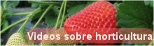 Enlace a videos de horticultura